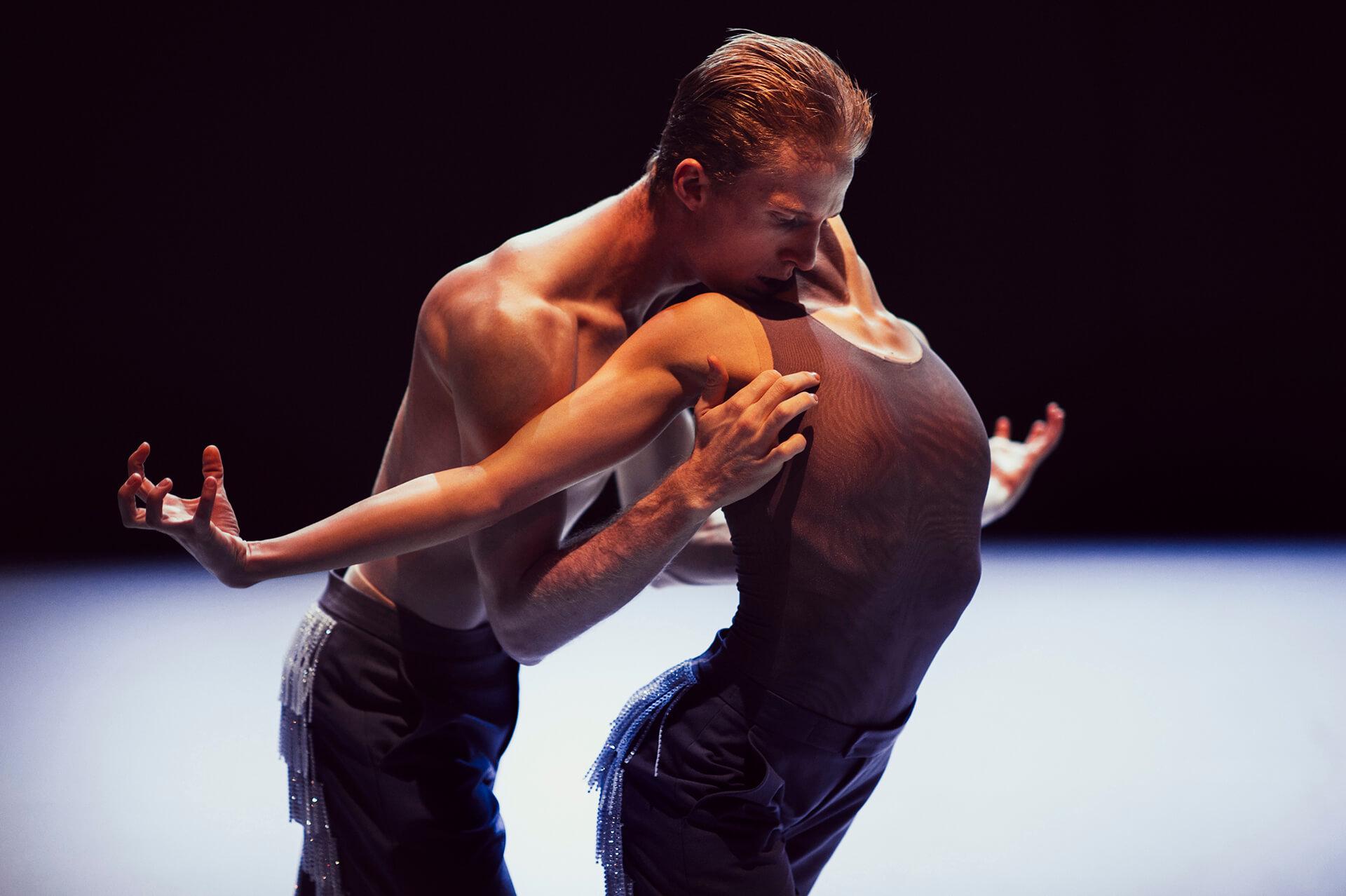 Pokret, iznutra – 16. Beogradski festival igre, jedan pogled iz publike